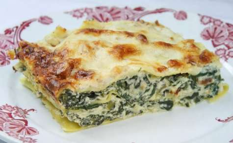 Lasagnes aux blettes, ricotta, parmesan et pignons