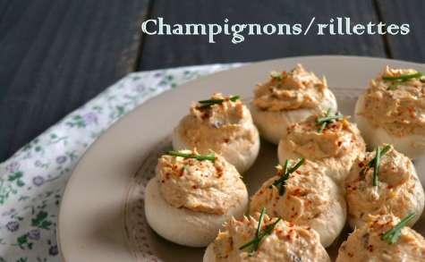 Champignons farcis aux rillettes de sardine, saveur provençale