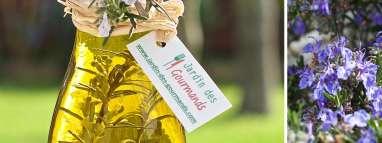 10 recettes pour profiter de la saveur du romarin