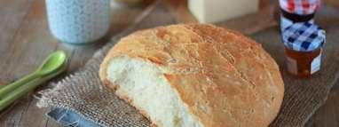 Le plein de petits pains