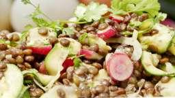 Lentilles, courgettes, radis à la coriandre