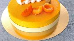 Entremets chocolat blanc-abricots