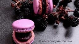 Macarons mûre chocolat noir