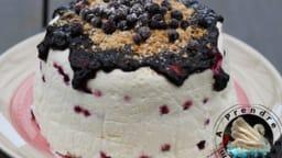 Gâteau sans cuisson aux myrtilles