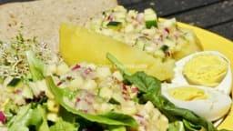 Repas alcalin : idée d'assiette composée complète