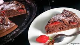 Gâteau aux yaourt, fraises et cacao en poudre