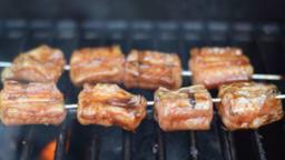 Brochette de roussette au barbecue ou à la plancha