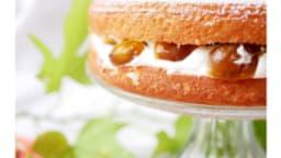 Sponge cake à la mirabelle