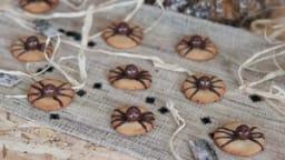 Sablés araignées