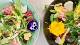 Salade de légumes crus