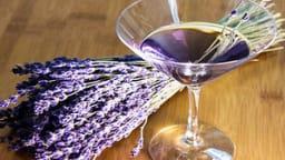 Cocktail martini lavande