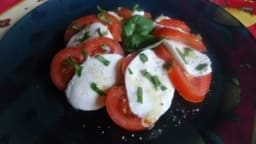 Tomates mozzarella au basilic