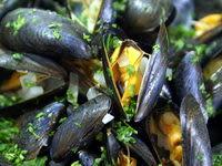 Appareil fruits de mer - Etape 9