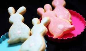 Petits lapins roses et bleus