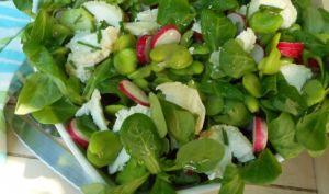 Salade de mâche, févettes et radis au chèvre
