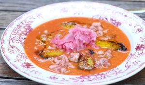 Gaspacho à deux ingrédients et sorbet de canneberges