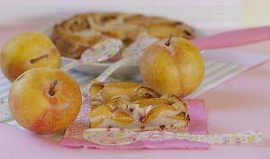 Gâteau au yaourt aux prunes et brisures de framboises