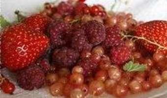 Gratin de fruits rouges - Etape 1