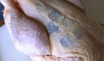 Poularde demi-deuil - Etape 5