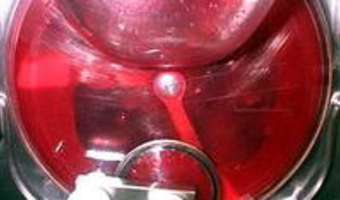 Sorbet groseilles cassis - Etape 9