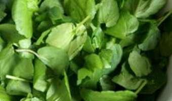 Potage au cresson - Etape 2