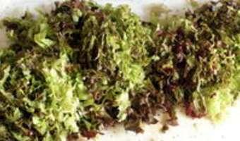 Salade cuite en chiffonnade - Etape 1