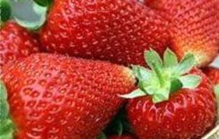 Gratin de fruits rouges - Etape 2