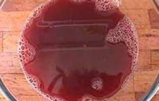 Pêches au vin rouge épicé - Etape 6