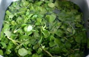Salade cressonnière - Etape 1