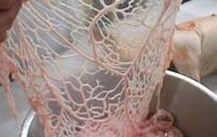 Cochon de lait rôti - Etape 8