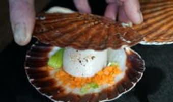 Noix de Saint-Jacques cuites en coquilles - Etape 8