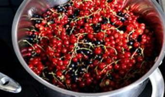 Gelée et sirop de groseilles et cassis - Etape 1
