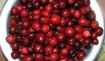 Lapin au vinaigre et aux airelles - Etape 1