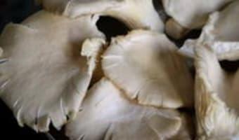 Pleurotes sautés - Etape 1