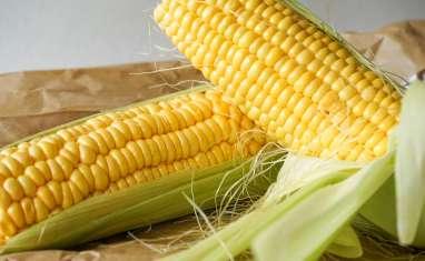 Maïs poché ou grillé
