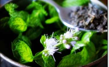 Thé vert à la menthe