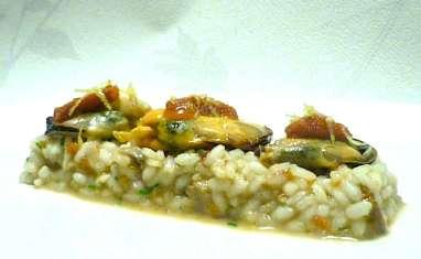 Risotto aux oursins, moules et bouillon de cèpes
