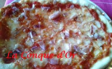 Pizza aux oignons de Tropea et anchois au four à bois
