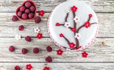 Gâteau en pâte à sucre chocolat framboise