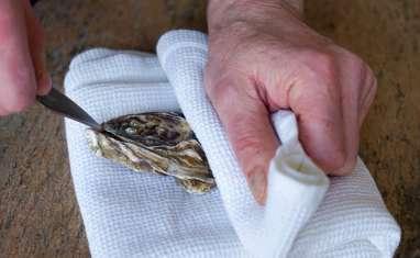 Ouvrir les huîtres... sans se blesser !