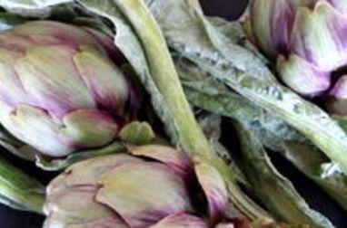 Tourner les artichauts poivrade