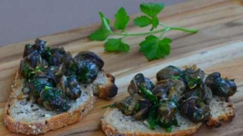 Recette gourmande de tartines de poêlée d'escargots