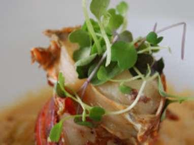 Crabe, tourteau farci aux fines herbes et mayonnaise