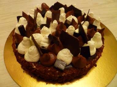Fantastik 100% cacao Christophe Michalak
