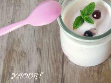 Des yaourts à faire soi-même