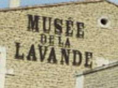 Visitez le Musée de la lavande