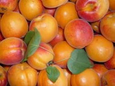 Coulis de pêches abricots et fruits exotiques
