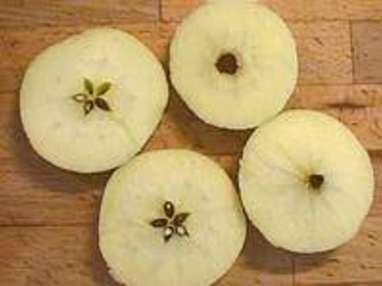 Eplucher et évider une pomme - Etape 9