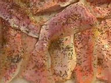 Filets de rougets sur canapés - Etape 1