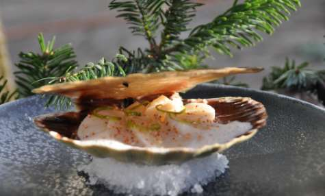 La Saint-Jacques cuite en coquille, gingembre et zestes de citron vert